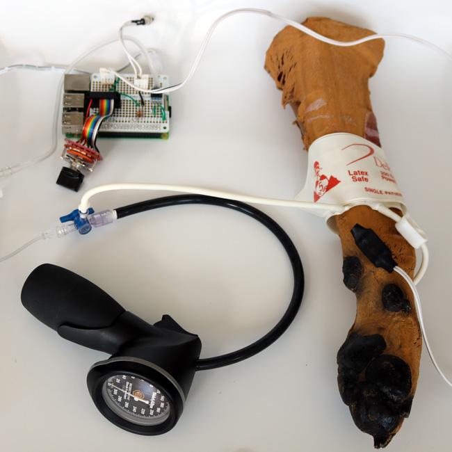 Doppler Blood Pressure Simulator - Eoghan's Notes